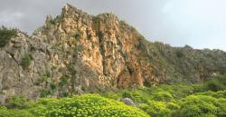 Virgem do Monte Carmelo, modelo de oração, de contemplação e de dedicação a Deus. Seu escapulário recorda a misericórdia e proteção de Deus.