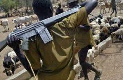 Cerca de 6.000 cristãos nigerianos foram mortos desde 2015 por militantes do Boko Haram e pastores Fulani.