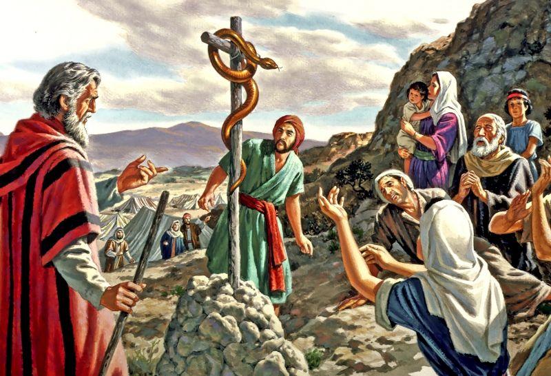 Animal pouco sociável e ao mesmo tempo simbólico, a serpente é figura evocada pela Liturgia na Festa da Exaltação da Santa Cruz.